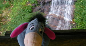 Cute in cartoons, but don't be like Eeyore.