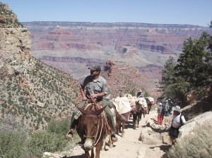 Modern transportation at the Grand Canyon