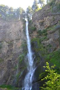 Multnomah Falls #39