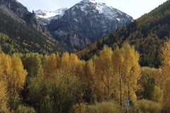 Fall color in Telluride Colorado